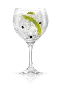 Martin Miller's Gin & Tonic